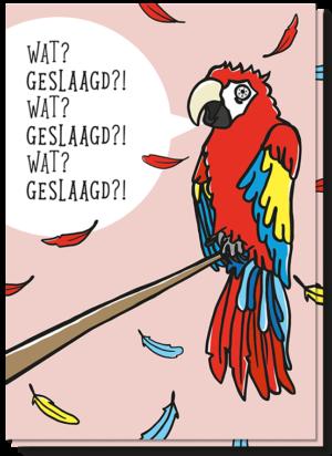 Voorkant geslaagd kaart met daarop een verbaasde papegaai die zegt 'Wat? Geslaagd?! Wat? Geslaagd?!'