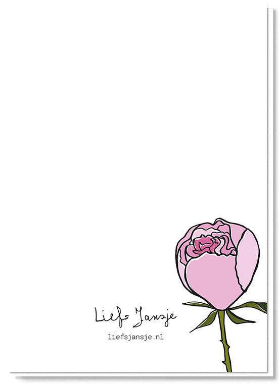 Achterkant bloemenkaart met daarop een pioenroos, verder blanco