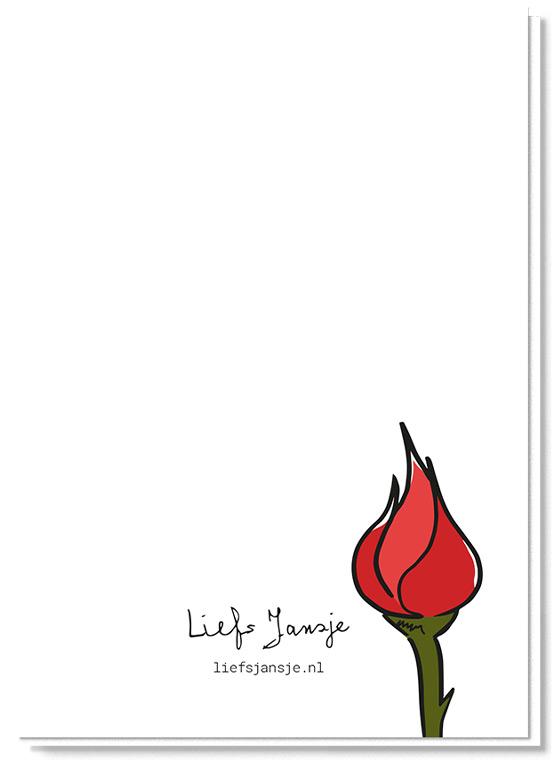Achterkant bloemenkaart met daarop een roos in de knop