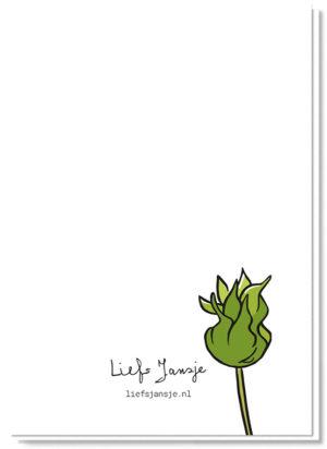 Achterkant bloemenkaart met daarop een zonnebloem in de knop, verder blanco