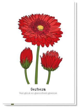 Voorkant bloemenkaart met daarop 3 rode gerbera's en de betekenis van de bloem 'Veel geluk en gezondheid gewenst'