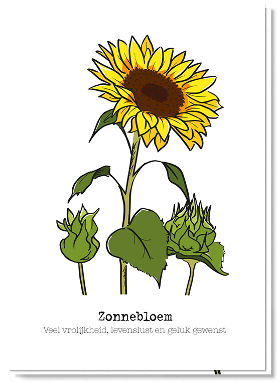 Voorkant bloemenkaart met daarop een zonnebloem en 2 in de knop, daaronder staat de betekenis 'Veel vrolijkheid, levenslust en geluk gewenst'