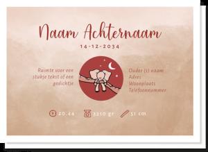 Achterkant geboortekaartje olifantje waar naam, geboortetijd, gewicht etc bij geplaatst kunnen worden