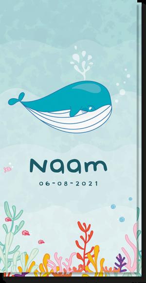 Uniek geboortekaartje met een Walvis erop